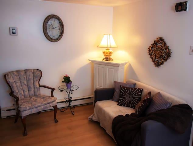 Salon/living room area