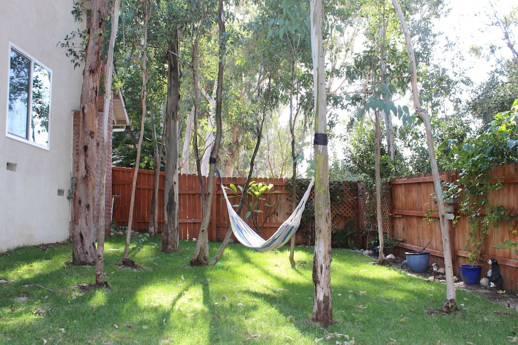 Peaceful Side Yard with Hammock