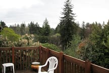 View one from our deck.