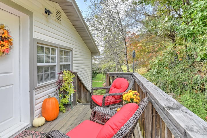 Cozy Apartment 10 minutes from downtown Asheville