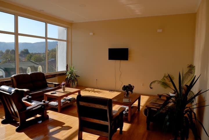 Panoramic hostel - Twin room