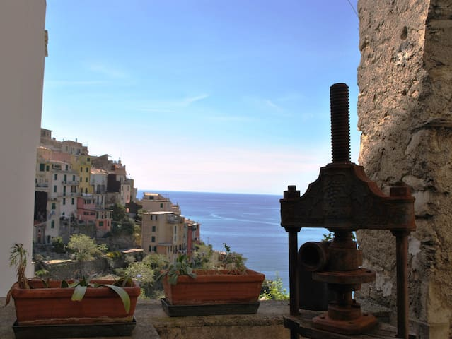 Room two steps from 5 Terre trail (202) - Corniglia - Lainnya