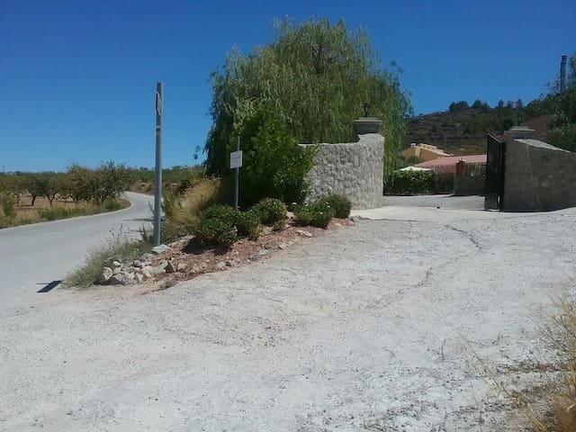 Entrance to Casa/Casita & Grounds.  The lane (camino) is Ctra. Al Chaparral in the direction to Calle Mediodia (Barrio Nuevo)  1.3km and on to Bullas village centre.  A lovely walk when it's not too hot.