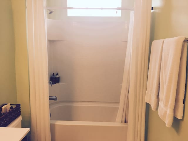 Guest Shower (Private)