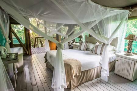 Tartaruga Maritima Luxury Tented Camp - Lopes - Tent