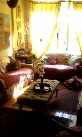 Casa di artista nel verde di Roma - Roma - Apartamento