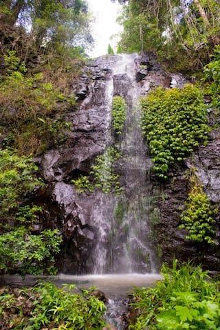 #Nimbin Waterfall Retreat