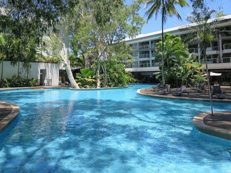 Large free form lagoon swimming pool