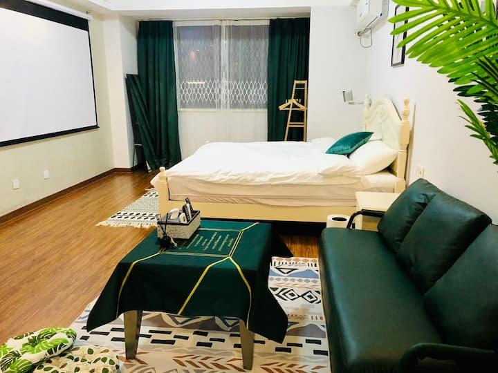 嘉兴南湖万达春江中心 可做饭 投影 绿色轻奢阳光房