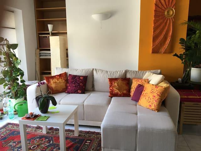 Sonnen-Terrasse, grün, ruhig, excellente Anbindung - Wien - Rivitalo