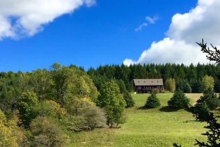 100 totally private acres: field, forest, pond - Bloomville - House