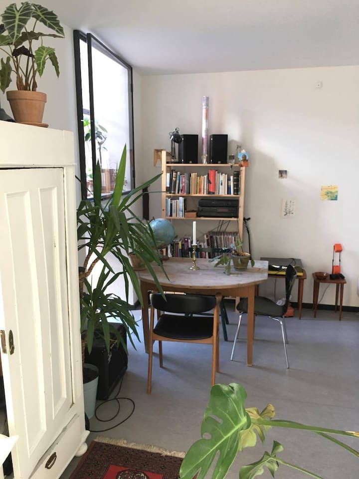 Cool studio apartment with shared balcony - Apartments for Rent in ...