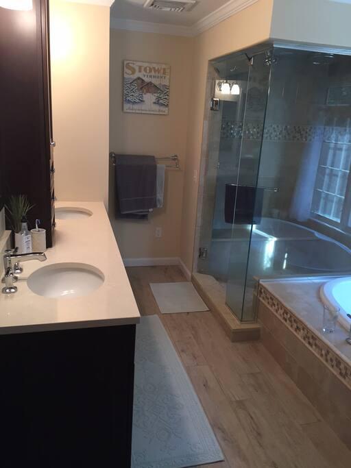 Master bath, shower, jacuzzi tub, & dual sink