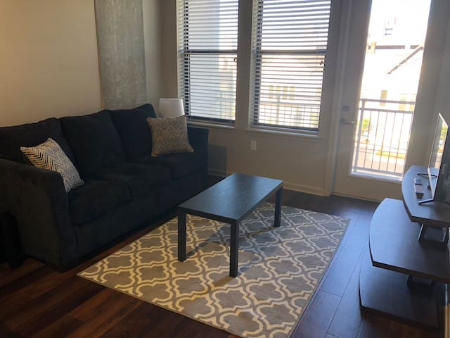 Elegant Flat in Heart of Music City! Near Gulch!