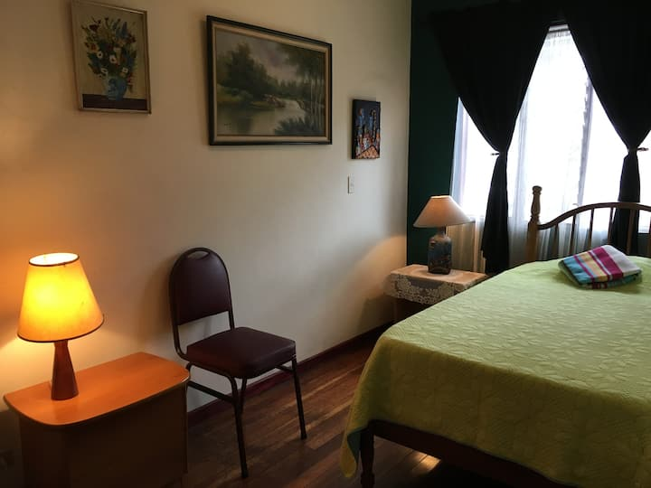 Relax downtown, cozy room and lovely garden!
