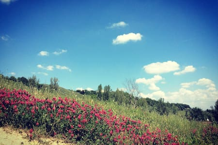 Dream and peace in the Tuscan countryside - Castelfiorentino - 獨棟