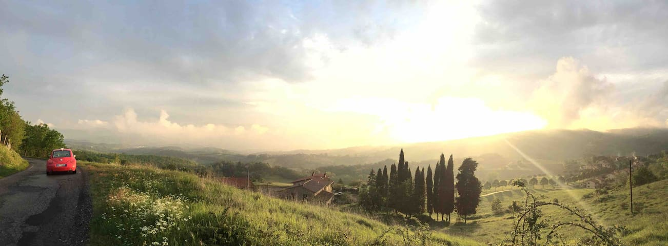 Tra Firenze e Pisa Nelle magiche colline di Vinci