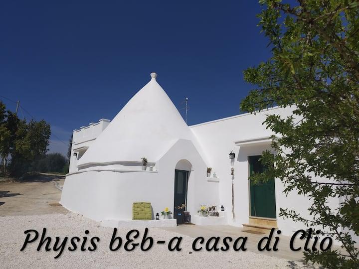 Physis b&b-a casa di Clio