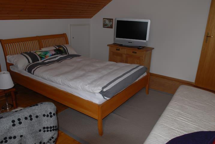 Cosy and sunny 1-Bedroom apartment in Langenargen - Langenargen - Wohnung