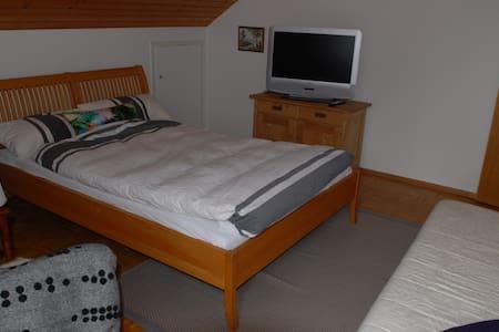 Cosy and sunny 1-Bedroom apartment in Langenargen - Langenargen - อพาร์ทเมนท์
