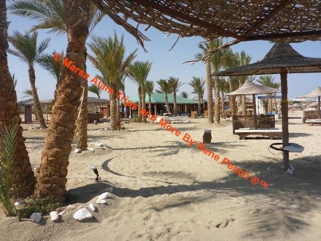 Marsa Alam Trips and More by Rene Pesch