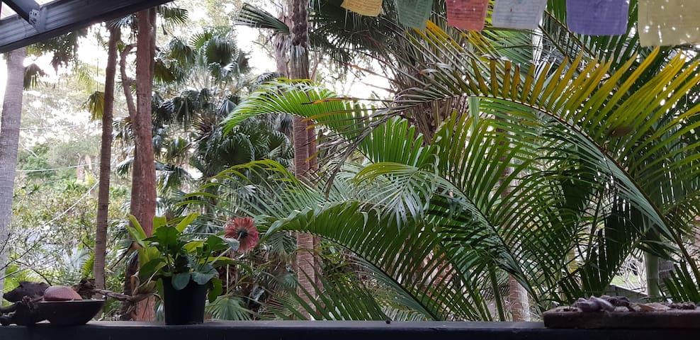 Rainforest House @ Lizzie Beach