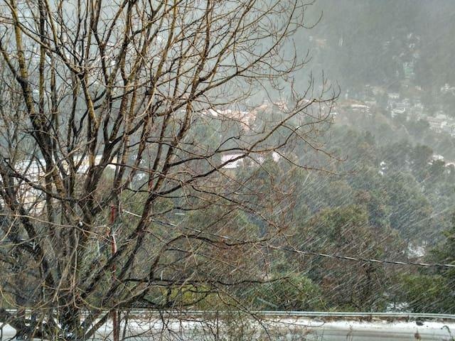Ka`fal - Uttarakhand - Bed & Breakfast