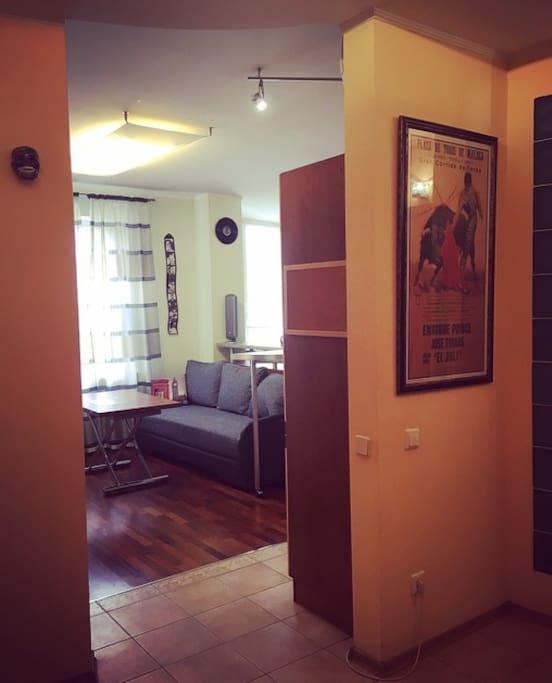 из холла проход в основную комнату с раскладным диваном, телевизором, барной стойкой, кухней и рабочим местом