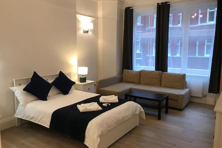 Massive En-suite Room (Hygienic) in Central London