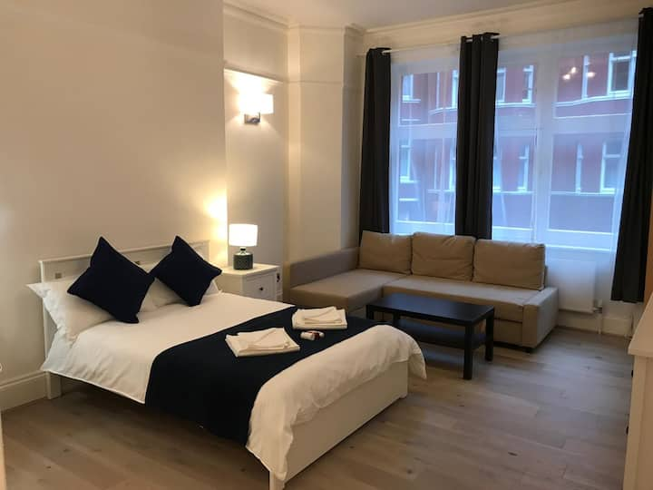 Massive En-suite Room (Hygienic) in Central London