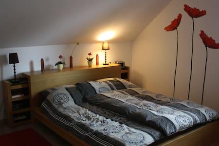 Große Wohnung nahe Herzogenaurach - Puschendorf - Lejlighed