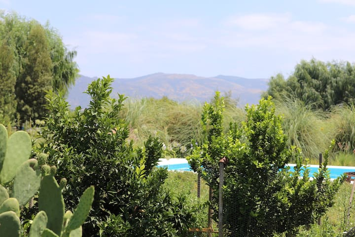 The mountains seen from the garden.