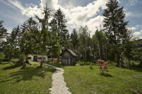 Romantic Family Chalet near Ljubljana