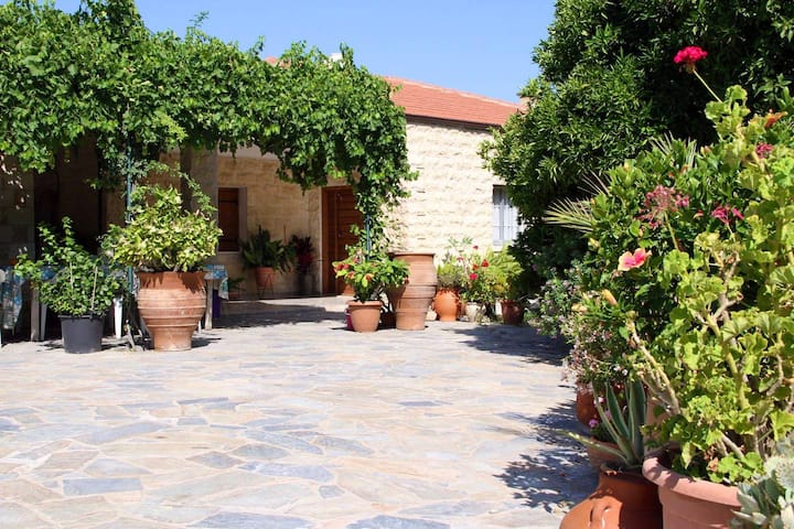 Orange Grove Stone House  Goudi Polis Chrysochous
