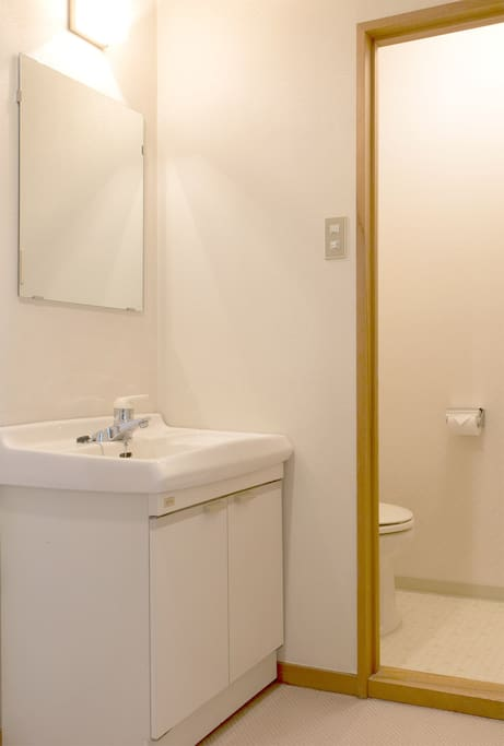 Private toilet and vanity