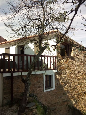 Shist house in a typical village - Sobreira Formosa - Vila
