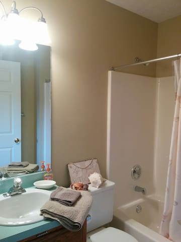 Private bath, take a bath or a shower with great water pressure!  Blow dryer is under the sink...