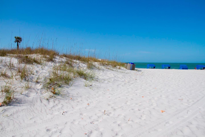 Mad Beach