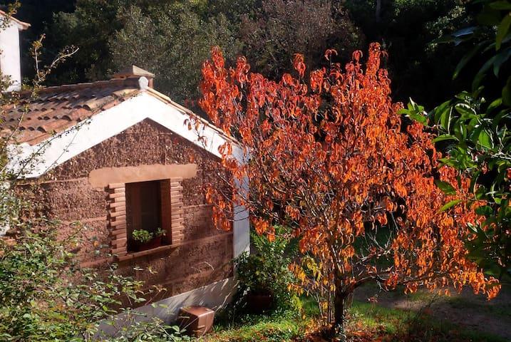 Casa da Adega - Quite Within Nature - São Luís - วิลล่า