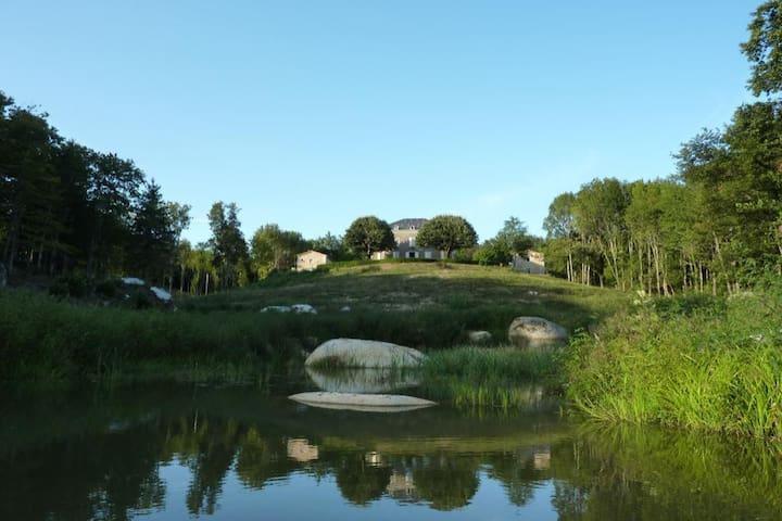 Country house-maison de campagne de charme (room1) - Burlats - Rumah