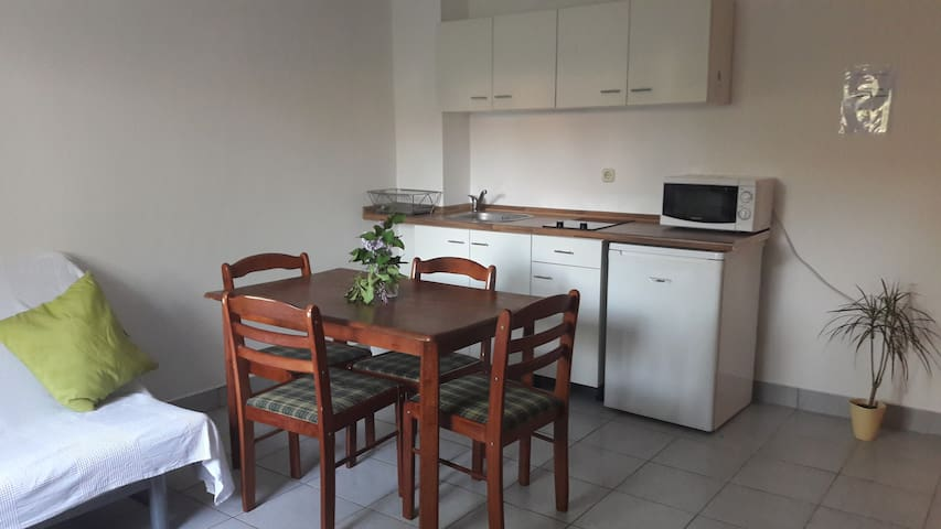 Apartment Klementina with parking and garden - Zagreb - Apartment