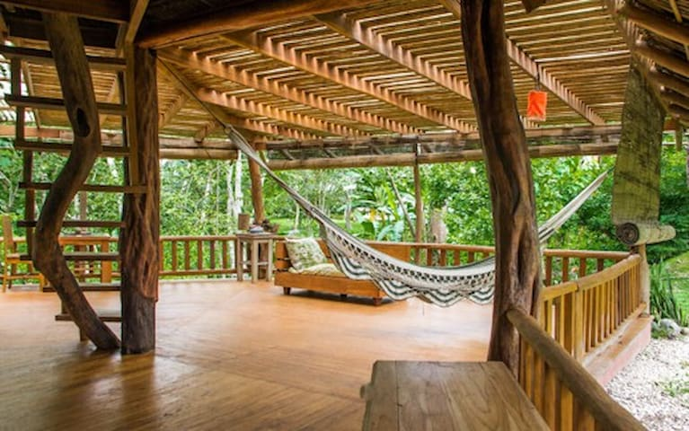 Wooden tipical rancho Open space in the jungle