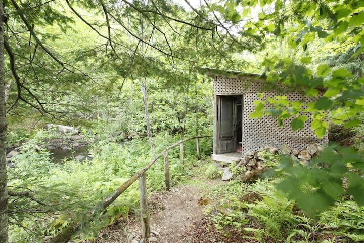 Cabane aux Cascades - Les Conifères