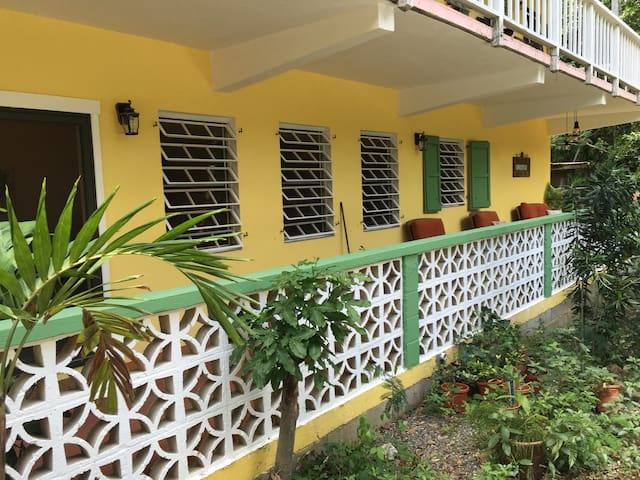 Clean, Comfortable and Family Friendly! - Cruz Bay - Appartement