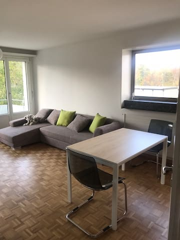 Günstig Wohnung in Zürich