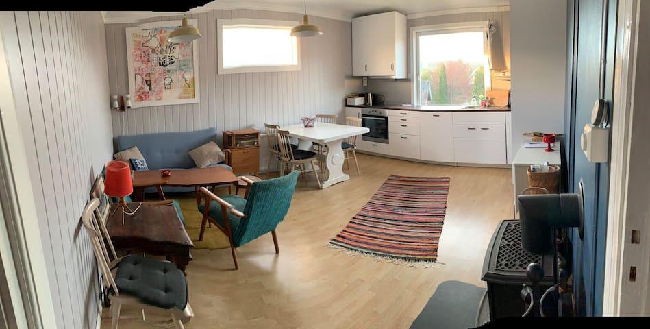Koselig leilighet ved Randsfjorden og Jevnaker