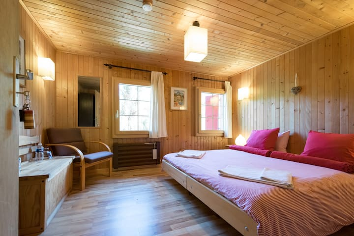 Chalet in Pays d'Enhaut  - A - La Tine - Bed & Breakfast
