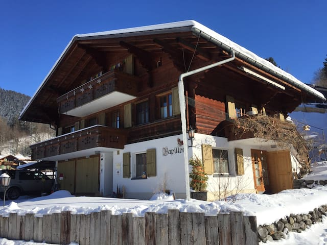 quiet 1.5-studio-apartment in Gstaad - Saanen - Apartment