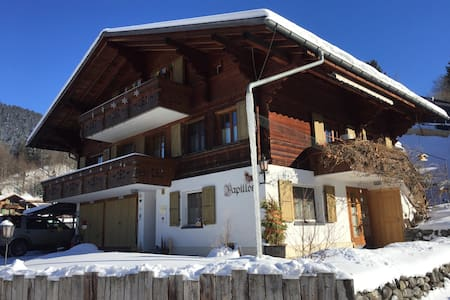 quiet 1.5-studio-apartment in Gstaad - Saanen - Apartamento