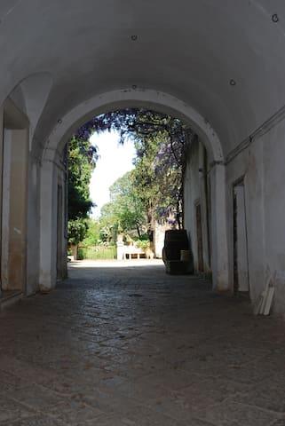 Palazzotto primi '800 - Magliano - Apartment